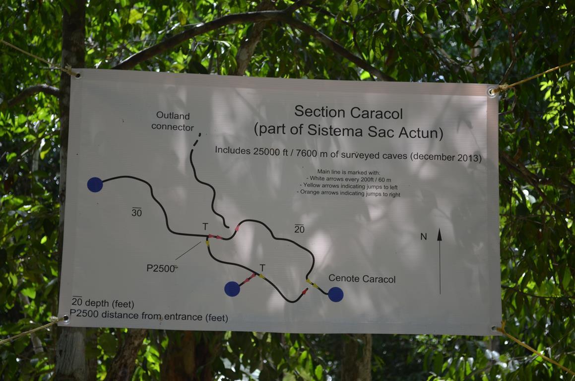 Cenote Caracol Mexico Cenote Caracol
